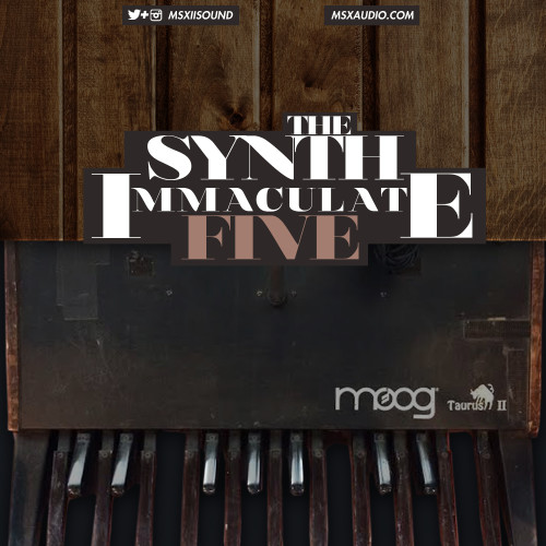 TheSynthImmaculate 5