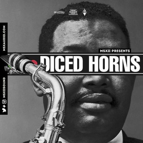MSXII_-_Diced_Horns_large